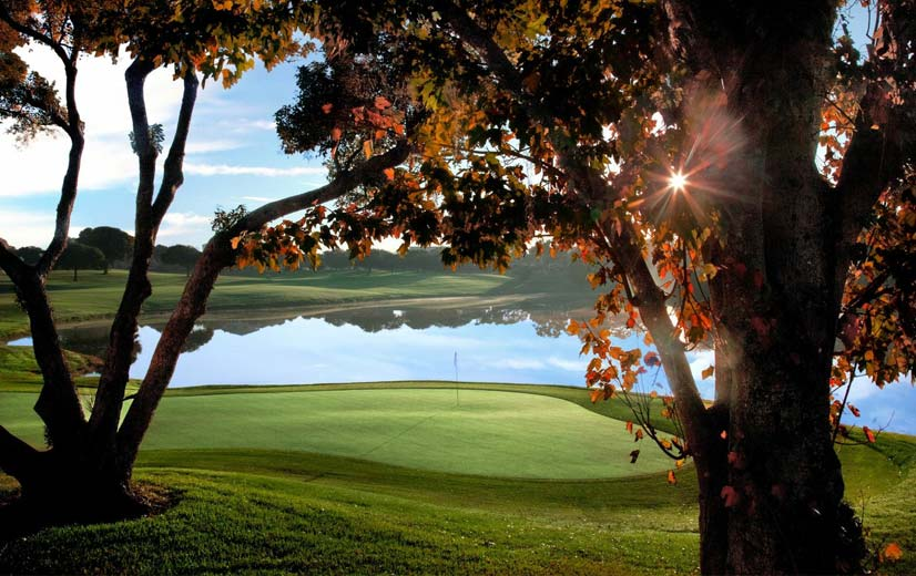 MetroWest Country Club